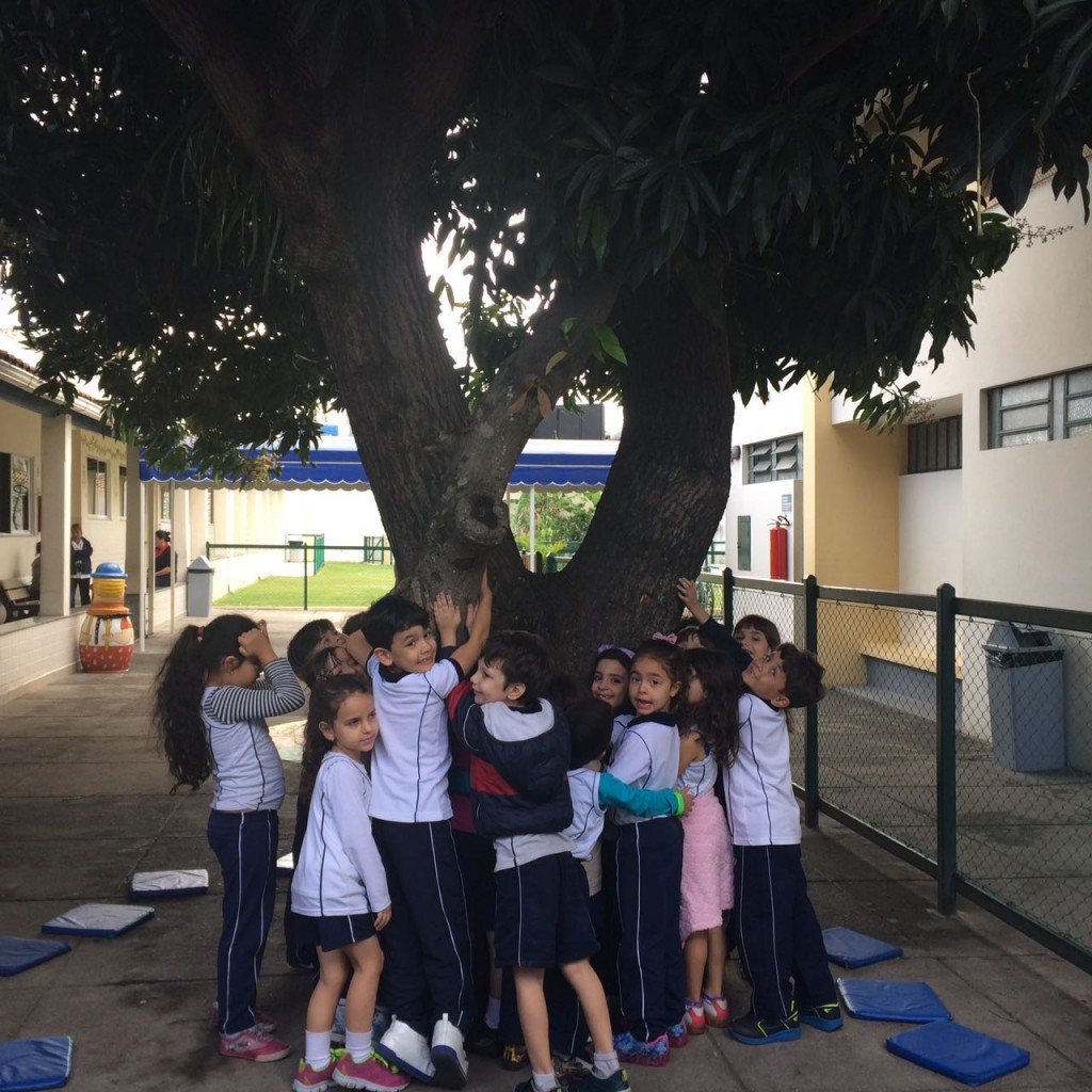 COLÉGIO SANTA MÔNICA – ATIVIDADE SOBRE O DIA DA ÁRVORE – SÃO GONÇALO