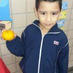Fruta-18-150x150